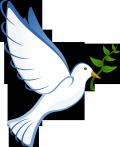 Dove-41260_1280