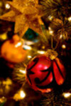 Christmas2_1