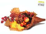 Harvest_basket_1